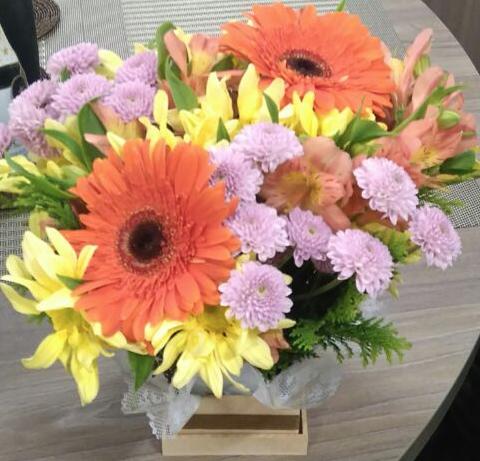 Flores Duque de Caxias - Floricultura Duque de Caxias - Produto 3