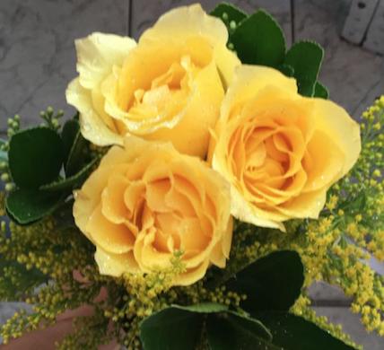 Flores Itaguaí - Floricultura Itaguaí - Produto 3