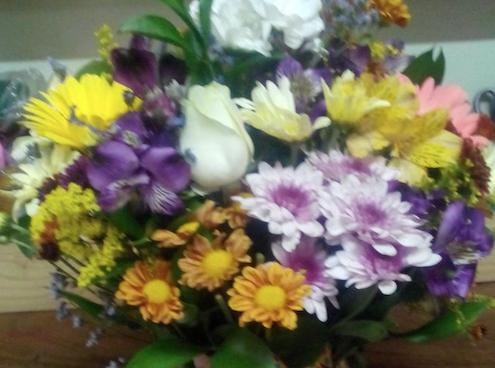 Flores Paranaguá - Floricultura Paranaguá - Produto 3