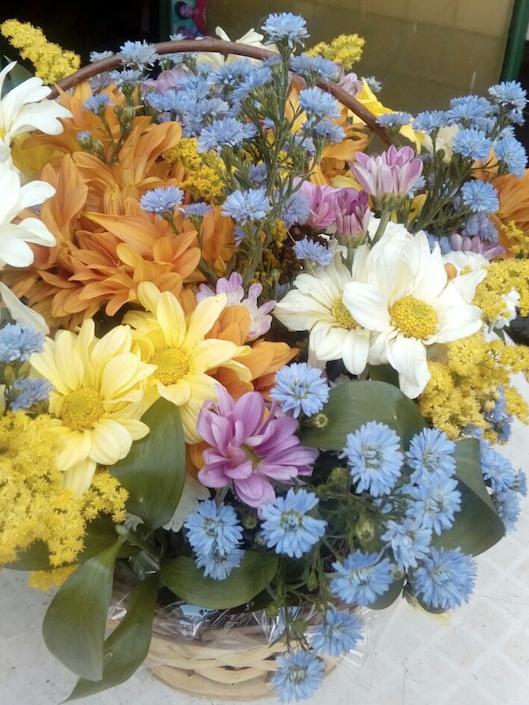 Flores Paulínia - Floricultura Paulínia - Produto 3