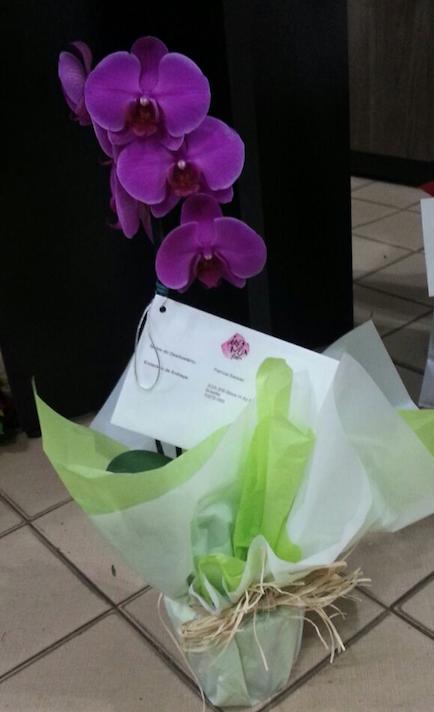 Flores Poços de Caldas - Floricultura Poços de Caldas - Produto 3