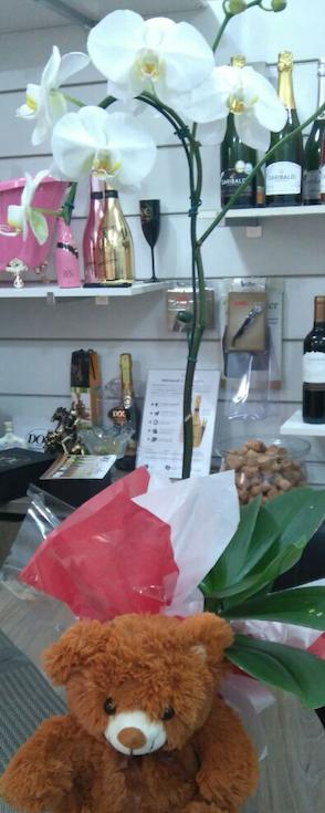 Flores Tatuí - Floricultura Tatuí - Produto 3