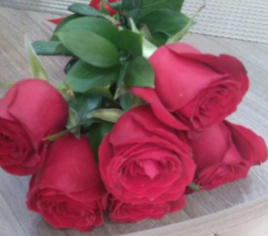 Flores Uruguaiana - Floricultura Uruguaiana - Produto 3