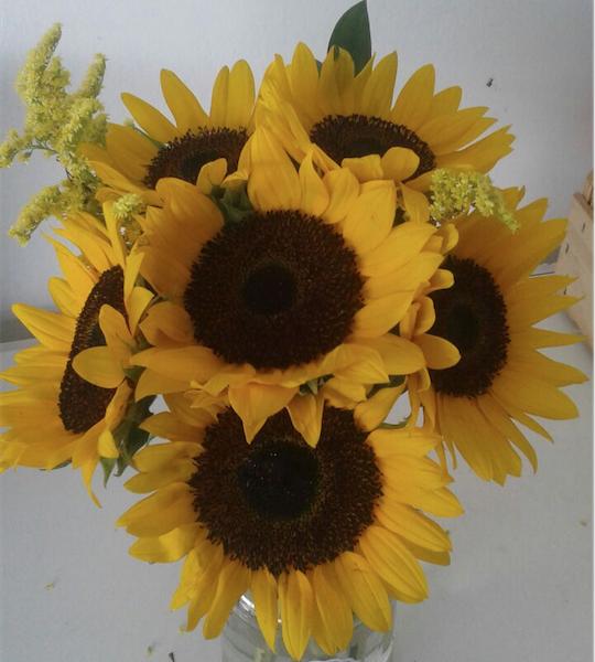 Flores Valinhos - Floricultura Valinhos - Produto 3