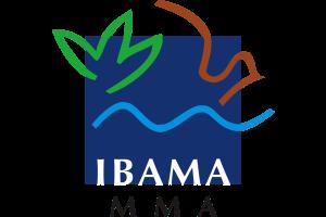 ANALISTA AMBIENTAL | IBAMA