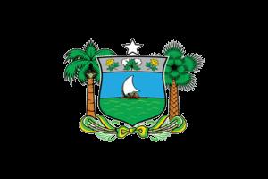 AGENTE PENITENCIÁRIO DO RIO GRANDE DO NORTE | SEJUC/RN