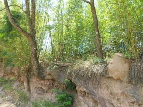 Terreno, Caxambu, Jundiaí (1384584) - Foto 6