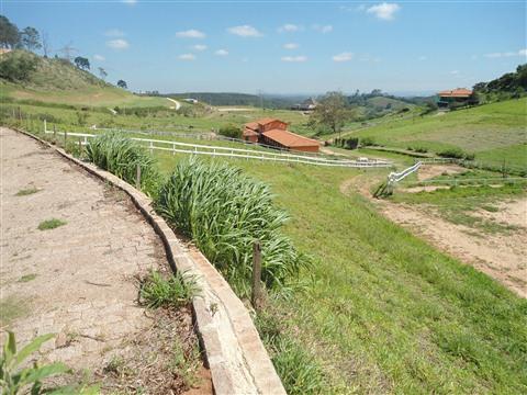 Fazenda 3 Dorm, Jacaré (haras), Cabreuva (1380889) - Foto 4