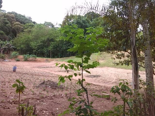 S?tio para vender no bairro Princesa Da Colina em Itatiba SP