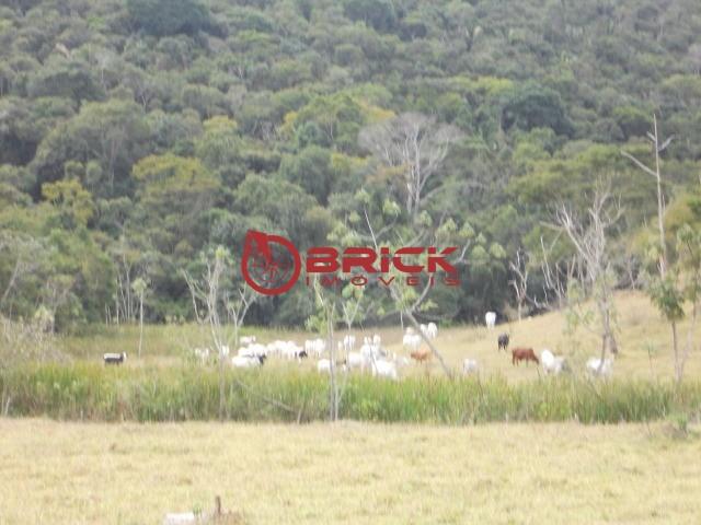 Fazenda / Sítio à venda em Centro, São José do Vale do Rio Preto - RJ - Foto 14