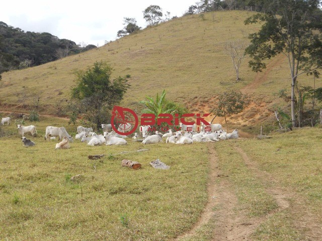 Fazenda / Sítio à venda em Centro, São José do Vale do Rio Preto - RJ - Foto 15