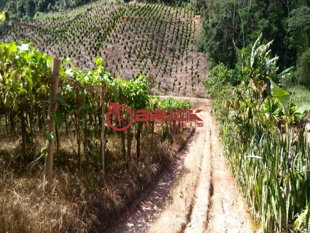 Fazenda / Sítio à venda em Centro, São José do Vale do Rio Preto - Foto 1