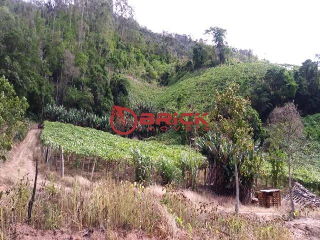 Fazenda / Sítio à venda em Centro, São José do Vale do Rio Preto - Foto 12