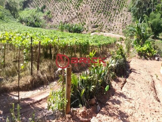 Fazenda / Sítio à venda em Centro, São José do Vale do Rio Preto - Foto 18