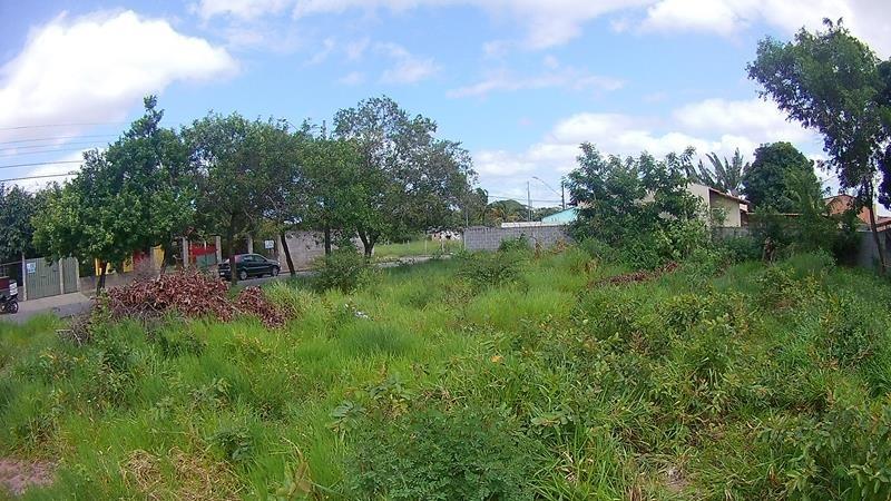 jacaraipe, lote plano  com asfalto e esgoto, rua do onibus