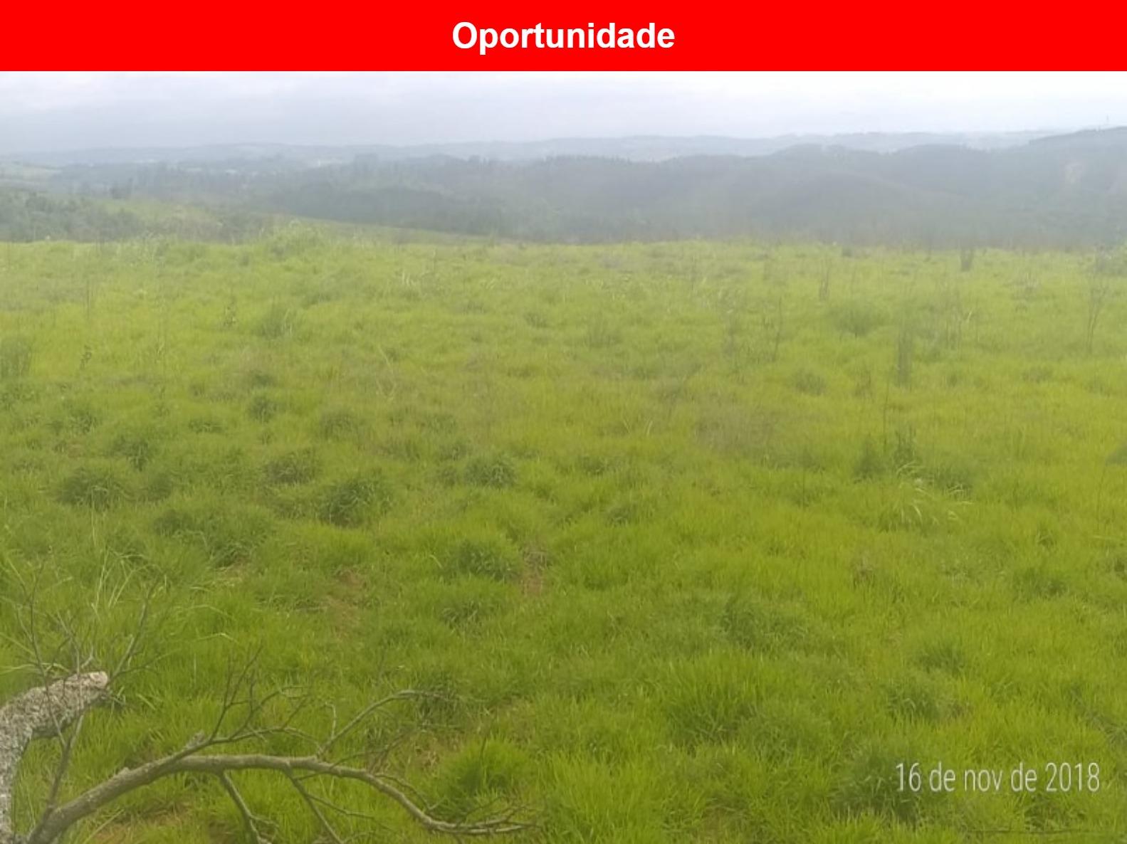 Terreno a venda no Bairro Dos Morros, Votorantim - SP