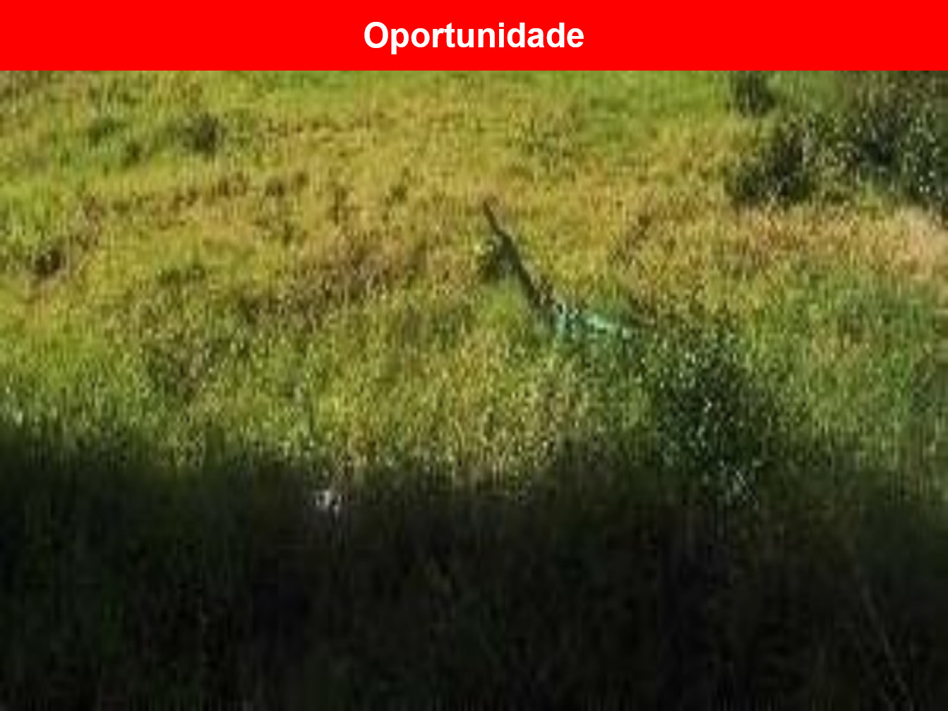 Terreno a venda no Vila Mineirão, Sorocaba - SP
