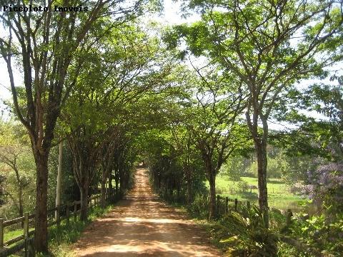 Land Lot em Monte Belo, Campinas - SP