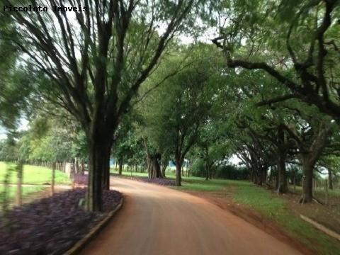 Terreno em Jaguariuna, Jaguariuna - SP