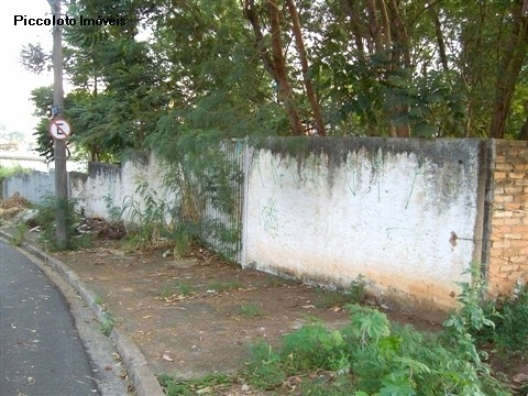 Terreno à venda em Nova Campinas, Campinas - SP