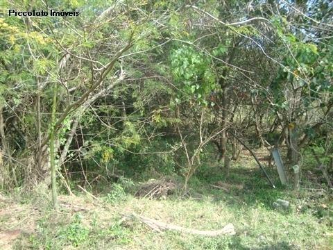 Terreno em Vila Hollandia, Campinas - SP