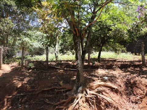 Land Lot em Mansoes Santo Antonio, Campinas - SP