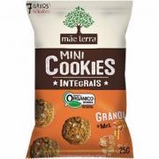 Mini Cookies Integrais Mãe Terra Granola e Mel Orgânico 25g
