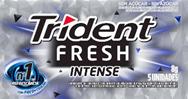 Goma de Mascar Trident Fresh Intense 8g