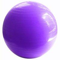 Pelota de pilates de 75cm de diámetro Violeta al mejor precio solo en loi