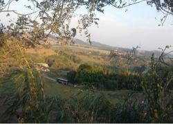 fazenda-em-valinhos-sp