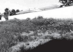 terreno-em-jaboticabal-sp