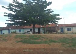 fazenda-em-espirito-santo-do-pinhal-sp