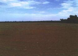 fazenda-em-porto-dos-gauchos-mt