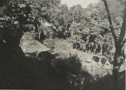terreno-em-cotia-sp