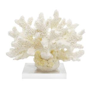 Escultura de Coral em Resina Branca e Base em Acrílico - 15x20x18cm