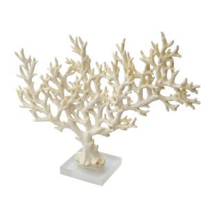 Escultura de Coral em Resina Branca e Base em Acrílico - 25x32x08cm