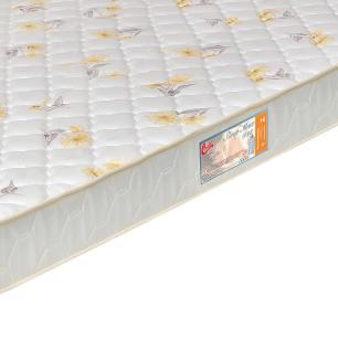 Colchão box Queen Size Castor Espuma D28 Sleep Max 15cm Florido