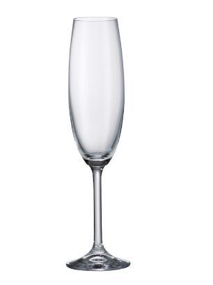 Jogo 6 Taças 220ml Champagne Gastro