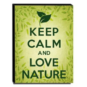 Quadro Keep Calm And Love Nature Canvas 40x30cm-KCA59