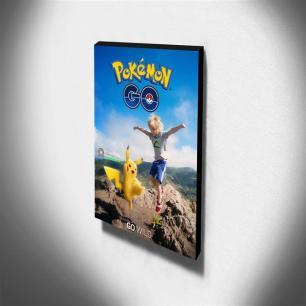 Quadro Pokémon GO Canvas 40x30cm-INF14