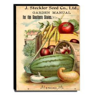 Quadro Cozinha Vintage Legumes Canvas 40x30cm-COZ185