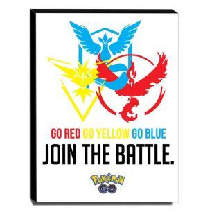 Quadro Pokémon GO Team Instinct Mystic Valor Canvas 40x30cm-INF011