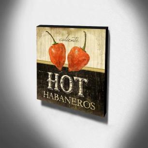 Quadro Cozinha Vintage Pimenta Canvas 30x30cm-COZ213