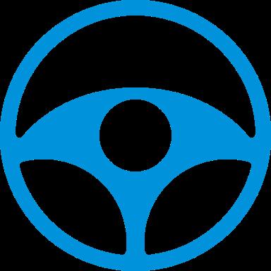Informações do condutor do veículo