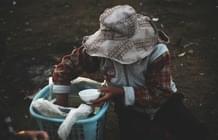 Subnutrição e a sua relação com a má distribuição de alimentos