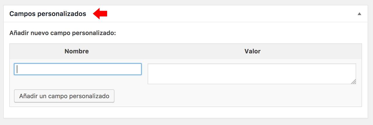 Sección de campos personalizados en la pantalla de edición de entrada