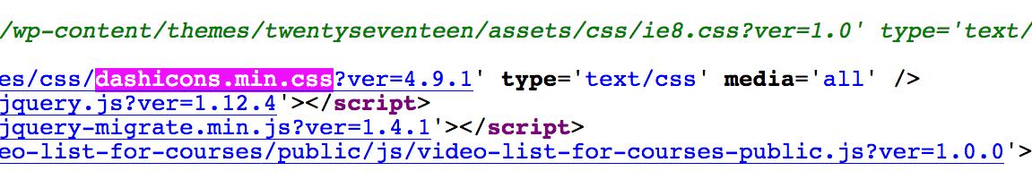 código fuente HTML revisando archivo dashicons.min.css