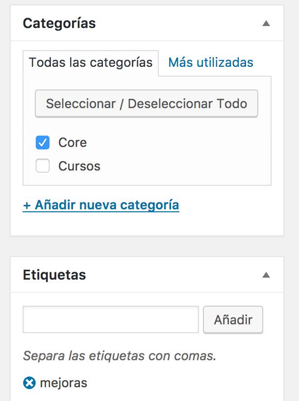 Sección de categorías y etiquetas de una entrada