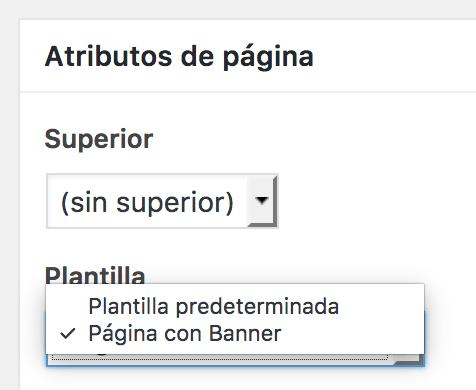 Sección para seleccionar plantilla página