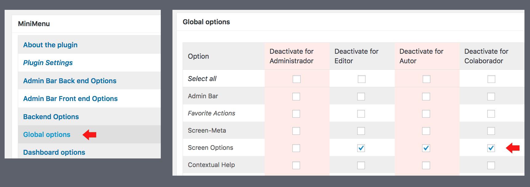 Ocultar opciones de pantalla con plugin